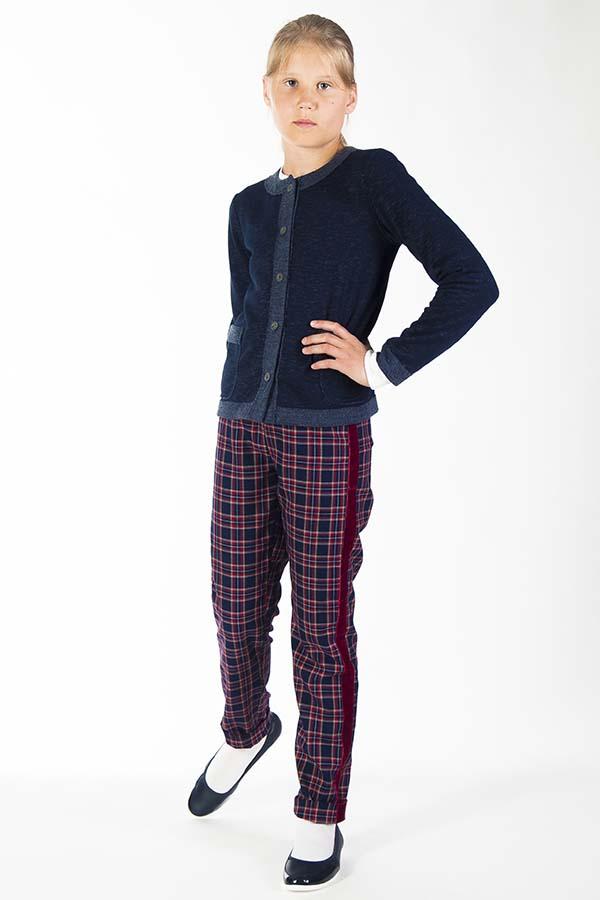 брюки с лампасами в школьной форме