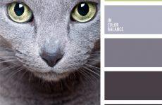 Это точно твои цвета!