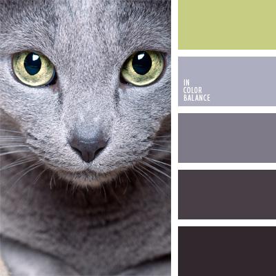 мой цвет